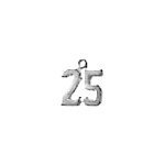 25th Silver Charms